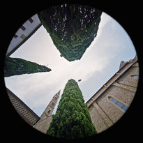 Chiostro Verde - Basilica di Santa Maria Novella - Firenze