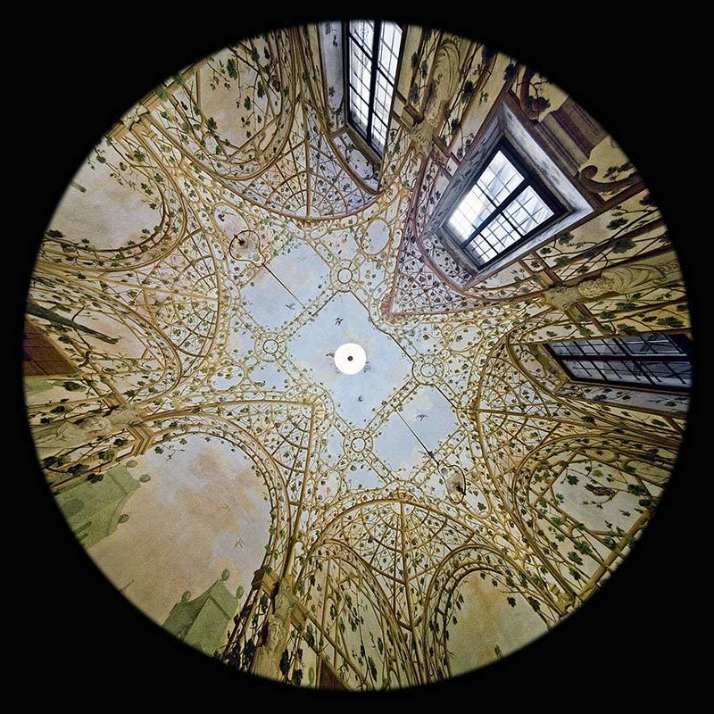 Sala del Giardino d'inverno nel Museo di Casa Martelli - Firenze